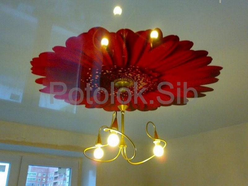 Натяжной потолок с фотопечатью | Комната